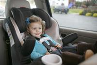 Convertible Safety Seat